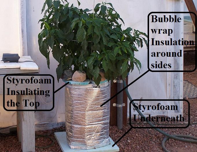 Nutrient Solution Temperature