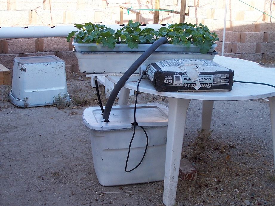 What size reservoir do I need for my hydroponic system