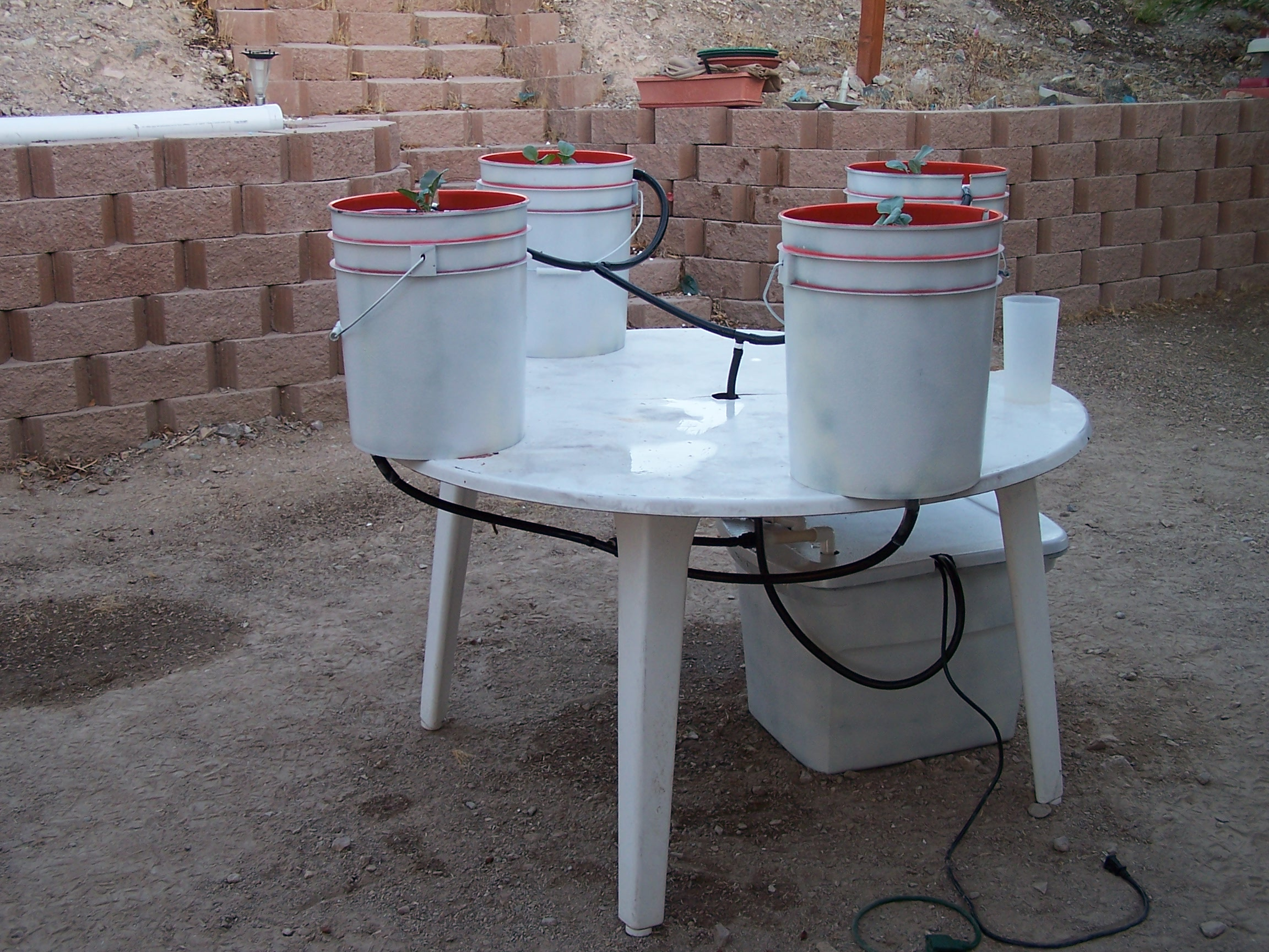 Easy to build hydroponic drip system teknologi241 for Simple drainage system