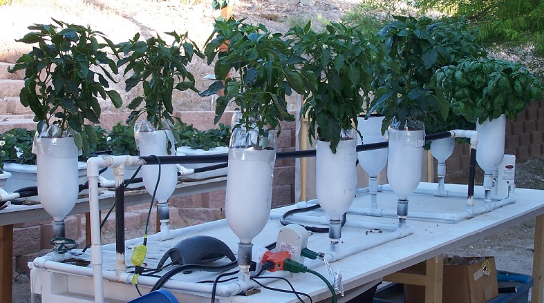 6 Plant Ebb & Flow (Flood And Drain) Hydroponic system