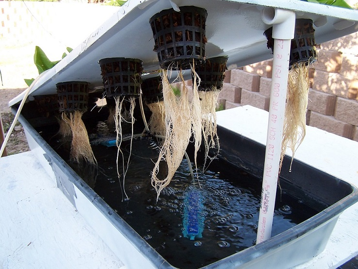 Expandable Hydroponic Water Culture System design plans