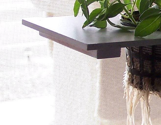 Build your own hydroponic window herb garden system