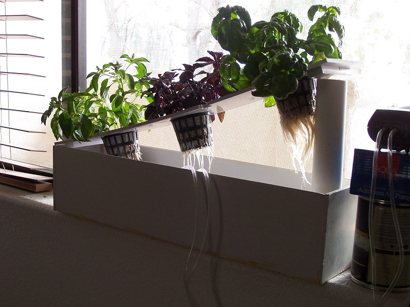 Superb ... Hydroponic Window Herb Garden